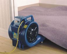 Floor & Carpet Dryer