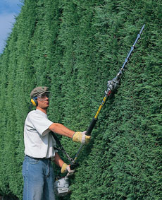 Long-Handled Hedge Trimmer