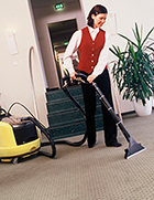 Professional Carpet Cleaner